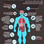 ¿Por qué es tan beneficioso el SEO? #Infografía|¿Por qué es tan beneficioso el SEO? #Infografía|usuarios activos en redes sociales